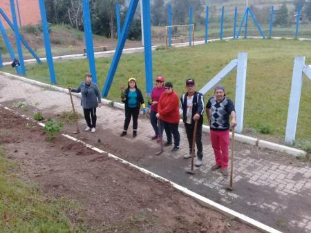 Voluntários realizam ação no bairro Morro Bonito