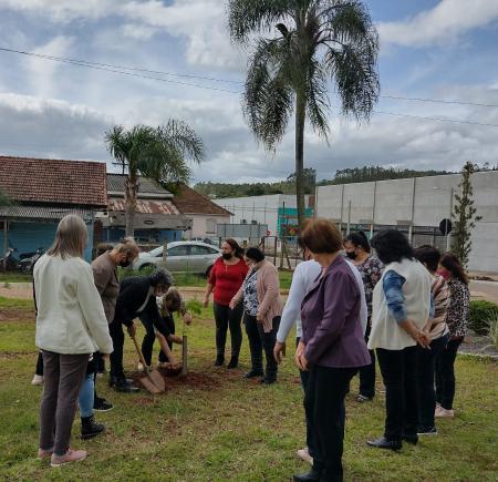 Plantio de uma Paineira foi realizado no Parque 13 de Abril